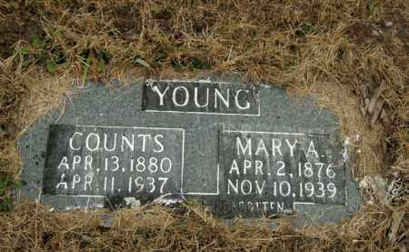 YOUNG, MARY A. - Boone County, Arkansas | MARY A. YOUNG - Arkansas Gravestone Photos