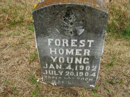 YOUNG, FOREST HOMER - Boone County, Arkansas | FOREST HOMER YOUNG - Arkansas Gravestone Photos