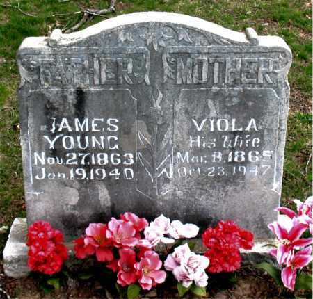 YOUNG, VIOLA - Boone County, Arkansas | VIOLA YOUNG - Arkansas Gravestone Photos