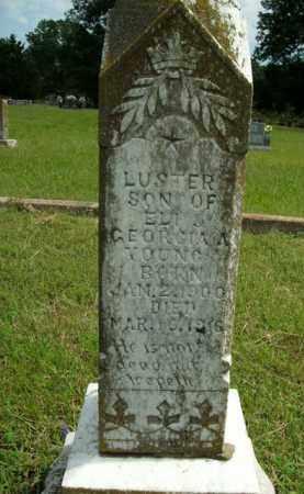 YOUNG, LUSTER - Boone County, Arkansas   LUSTER YOUNG - Arkansas Gravestone Photos