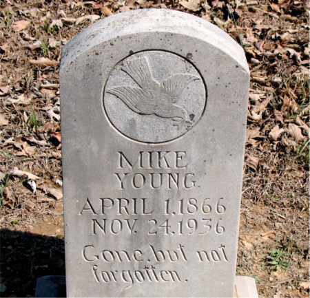 YOUNG, MIKE (DUTCH) - Boone County, Arkansas | MIKE (DUTCH) YOUNG - Arkansas Gravestone Photos