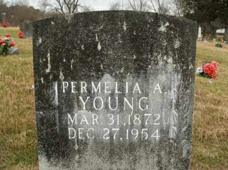 YOUNG, PERMELIA A. - Boone County, Arkansas | PERMELIA A. YOUNG - Arkansas Gravestone Photos