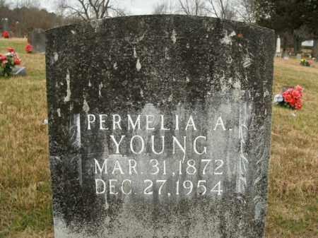 YOUNG, PERMELIA A. - Boone County, Arkansas | PERMELIA A. YOUNG - Arkansas Gravestone Photos