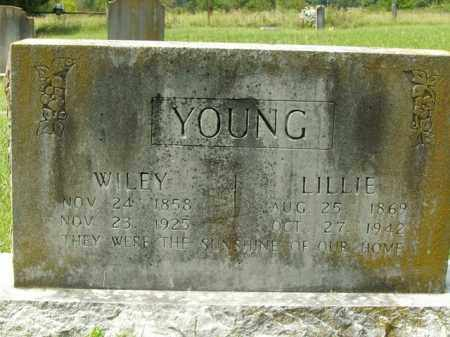 YOUNG, LILLIE - Boone County, Arkansas | LILLIE YOUNG - Arkansas Gravestone Photos