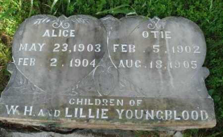 YOUNGBLOOD, ALICE - Boone County, Arkansas | ALICE YOUNGBLOOD - Arkansas Gravestone Photos