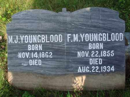 YOUNGBLOOD, F. M. - Boone County, Arkansas | F. M. YOUNGBLOOD - Arkansas Gravestone Photos