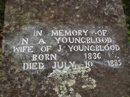 YOUNGBLOOD, N. A. - Boone County, Arkansas | N. A. YOUNGBLOOD - Arkansas Gravestone Photos