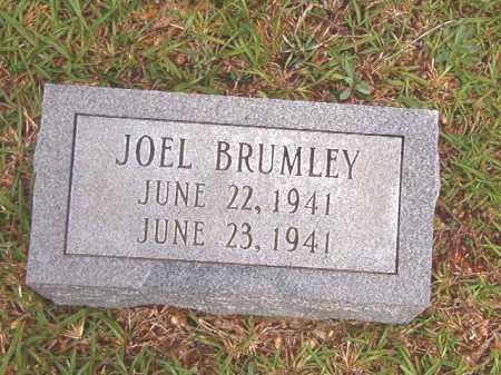 BRUMLEY, JOEL - Bradley County, Arkansas | JOEL BRUMLEY - Arkansas Gravestone Photos