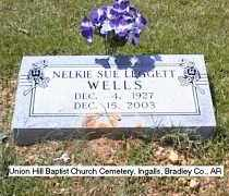 LEGGETT WELLS, NELKIE SUE - Bradley County, Arkansas | NELKIE SUE LEGGETT WELLS - Arkansas Gravestone Photos