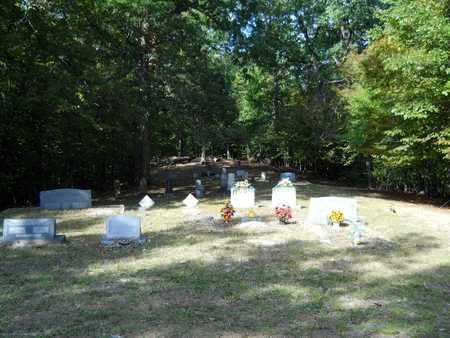 *DOUBLE SPRINGS CEMETERY,  - Calhoun County, Arkansas |  *DOUBLE SPRINGS CEMETERY - Arkansas Gravestone Photos