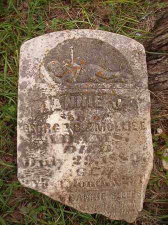 ADAMS, DANNIE J - Calhoun County, Arkansas | DANNIE J ADAMS - Arkansas Gravestone Photos