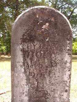AKENS, DICEY A - Calhoun County, Arkansas | DICEY A AKENS - Arkansas Gravestone Photos