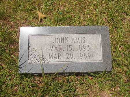 AMIS, JOHN - Calhoun County, Arkansas | JOHN AMIS - Arkansas Gravestone Photos