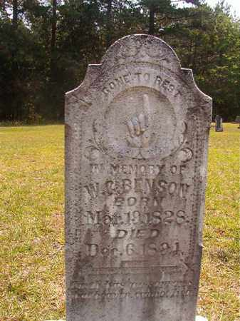 BENSON, W C - Calhoun County, Arkansas | W C BENSON - Arkansas Gravestone Photos