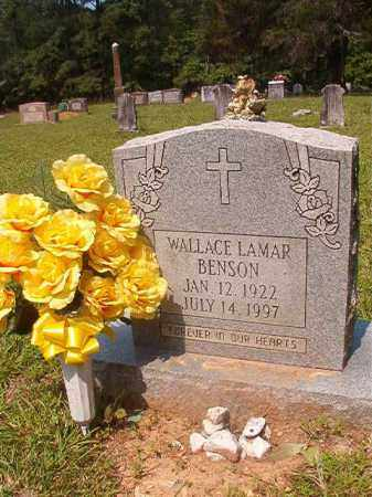 BENSON, WALLACE LAMAR - Calhoun County, Arkansas | WALLACE LAMAR BENSON - Arkansas Gravestone Photos