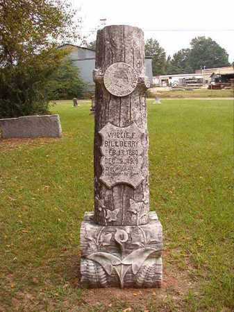 BILLBERRY, WILLIE F - Calhoun County, Arkansas | WILLIE F BILLBERRY - Arkansas Gravestone Photos