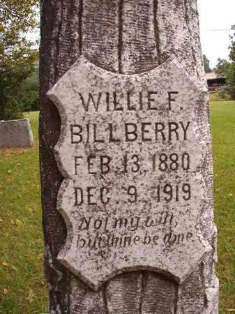 BILLBERRY, WILLIE F - Calhoun County, Arkansas | WILLIE F BILLBERRY - Arkansas Gravestone Photos