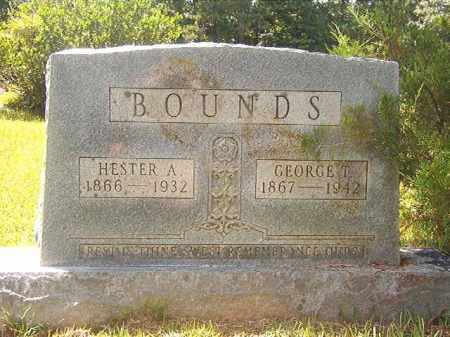 BOUNDS, HESTER A - Calhoun County, Arkansas | HESTER A BOUNDS - Arkansas Gravestone Photos