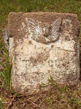 BRAGGS, JOSIE - Calhoun County, Arkansas | JOSIE BRAGGS - Arkansas Gravestone Photos