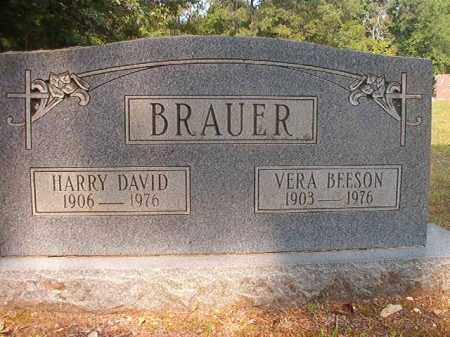 BRAUER, HARRY DAVID - Calhoun County, Arkansas | HARRY DAVID BRAUER - Arkansas Gravestone Photos