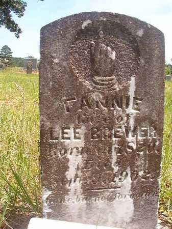 BREWER, FANNIE - Calhoun County, Arkansas | FANNIE BREWER - Arkansas Gravestone Photos