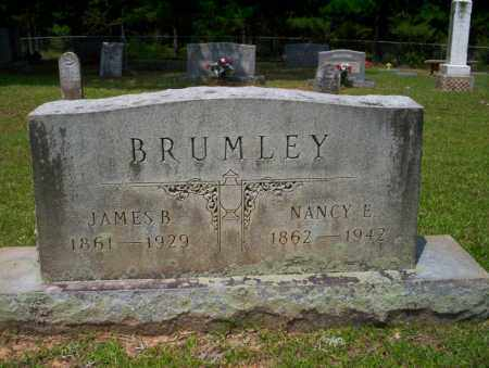 BRUMLEY, NANCY E - Calhoun County, Arkansas | NANCY E BRUMLEY - Arkansas Gravestone Photos