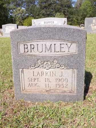BRUMLEY, LARKIN J - Calhoun County, Arkansas | LARKIN J BRUMLEY - Arkansas Gravestone Photos