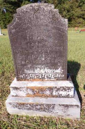 BRUMLEY, TROY - Calhoun County, Arkansas | TROY BRUMLEY - Arkansas Gravestone Photos