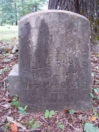 BURKS, LILLIE - Calhoun County, Arkansas | LILLIE BURKS - Arkansas Gravestone Photos