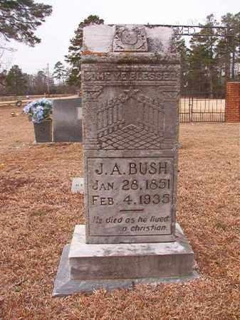 BUSH, J A - Calhoun County, Arkansas | J A BUSH - Arkansas Gravestone Photos