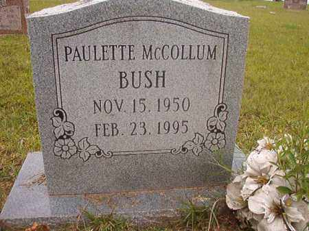 BUSH, PAULETTE - Calhoun County, Arkansas | PAULETTE BUSH - Arkansas Gravestone Photos