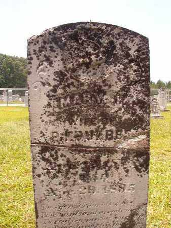 BUZBEE, MARY L - Calhoun County, Arkansas | MARY L BUZBEE - Arkansas Gravestone Photos