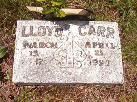 CARR, LLOYD - Calhoun County, Arkansas | LLOYD CARR - Arkansas Gravestone Photos