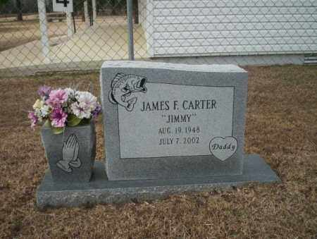 CARTER, JAMES F - Calhoun County, Arkansas | JAMES F CARTER - Arkansas Gravestone Photos