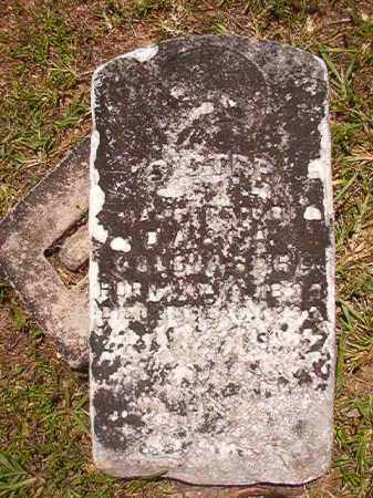 COLCLASURE, INFANT - Calhoun County, Arkansas | INFANT COLCLASURE - Arkansas Gravestone Photos