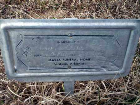 COLE, LOUIS - Calhoun County, Arkansas | LOUIS COLE - Arkansas Gravestone Photos