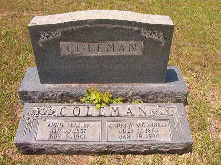 COLEMAN, ANDREW MCCONNELL - Calhoun County, Arkansas | ANDREW MCCONNELL COLEMAN - Arkansas Gravestone Photos