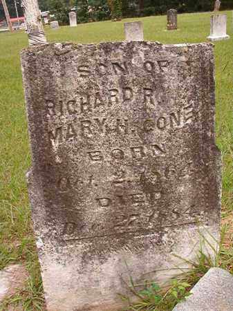 CONE, JAMES P - Calhoun County, Arkansas | JAMES P CONE - Arkansas Gravestone Photos