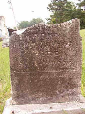 CONE, WILLIAM B - Calhoun County, Arkansas | WILLIAM B CONE - Arkansas Gravestone Photos