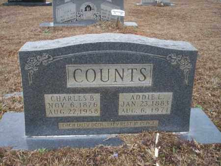 COUNTS, CHARLES B - Calhoun County, Arkansas | CHARLES B COUNTS - Arkansas Gravestone Photos