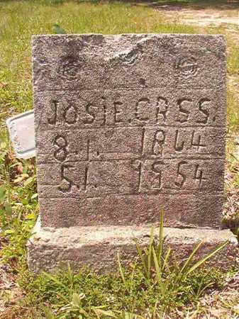 CROSS, JOSIE - Calhoun County, Arkansas | JOSIE CROSS - Arkansas Gravestone Photos
