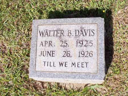 DAVIS, WALTER B - Calhoun County, Arkansas | WALTER B DAVIS - Arkansas Gravestone Photos