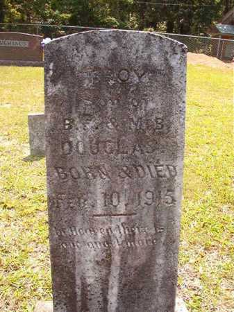 DOUGLAS, TROY - Calhoun County, Arkansas | TROY DOUGLAS - Arkansas Gravestone Photos