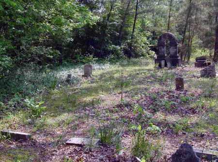 *DUNN-ABBOTT CEMETERY,  - Calhoun County, Arkansas |  *DUNN-ABBOTT CEMETERY - Arkansas Gravestone Photos