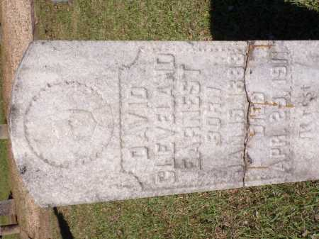 EARNEST, DAVID CLEVELAND - Calhoun County, Arkansas | DAVID CLEVELAND EARNEST - Arkansas Gravestone Photos