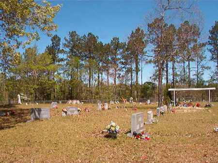 *EVANS CEMETERY OVERVIEW,  - Calhoun County, Arkansas |  *EVANS CEMETERY OVERVIEW - Arkansas Gravestone Photos