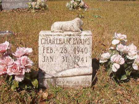 EVANS, CHARLEAN - Calhoun County, Arkansas | CHARLEAN EVANS - Arkansas Gravestone Photos