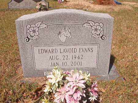 EVANS, EDWARD LAVOID - Calhoun County, Arkansas | EDWARD LAVOID EVANS - Arkansas Gravestone Photos
