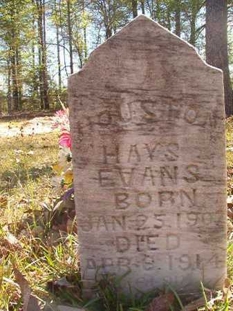EVANS, HOUSTON HAYS - Calhoun County, Arkansas | HOUSTON HAYS EVANS - Arkansas Gravestone Photos