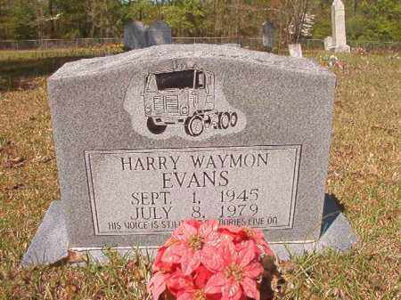 EVANS, HARRY WAYMON - Calhoun County, Arkansas | HARRY WAYMON EVANS - Arkansas Gravestone Photos